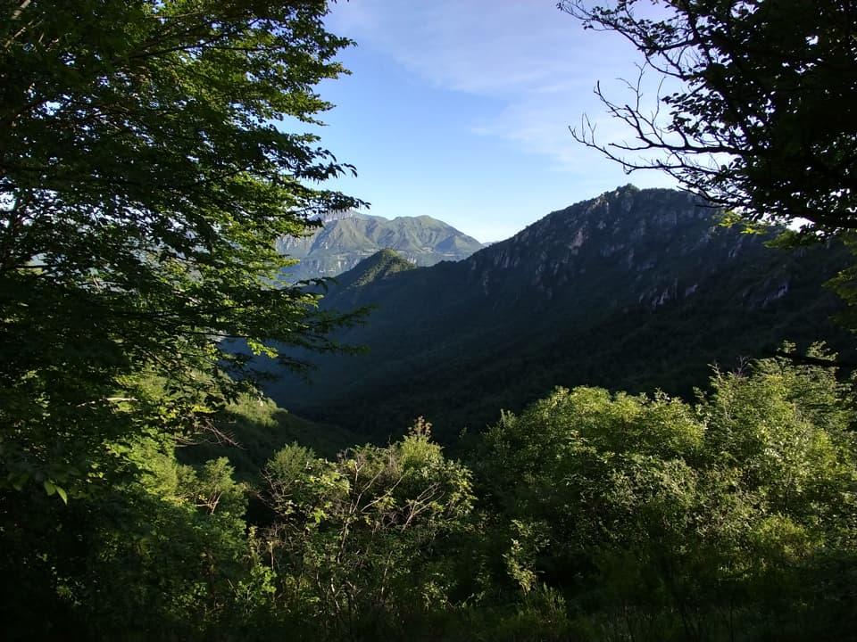 La discesa da Vandeno offre qualche bella immagine del Monte Guglielmo da cogliere dove la vegetazione lo permette