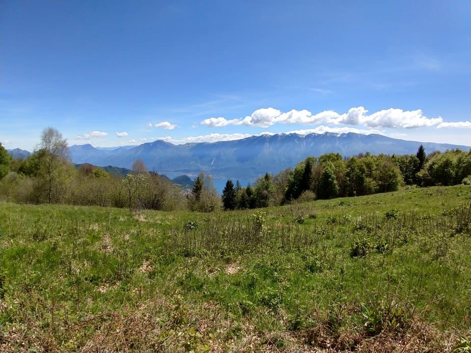 Ed eccoci giunti sulla verde cima del Monte Denervo dove possiamo riposare e ammirare questa cartolina