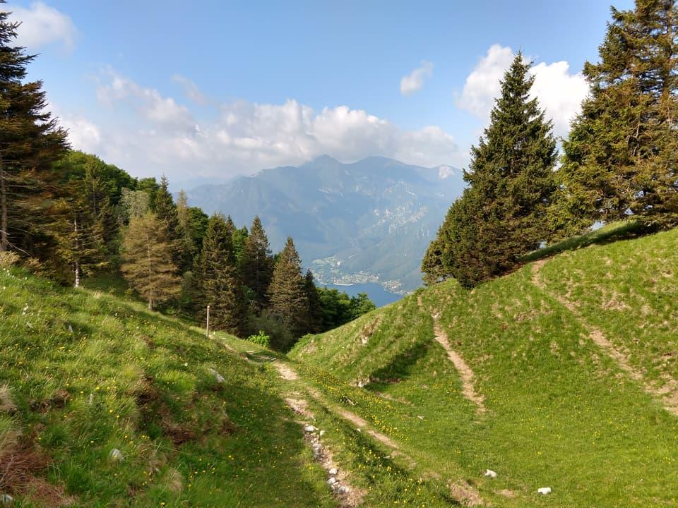 Finalmente il bosco lascia spazio al pascolo e la visuale si apre sulla Valle di Ledro
