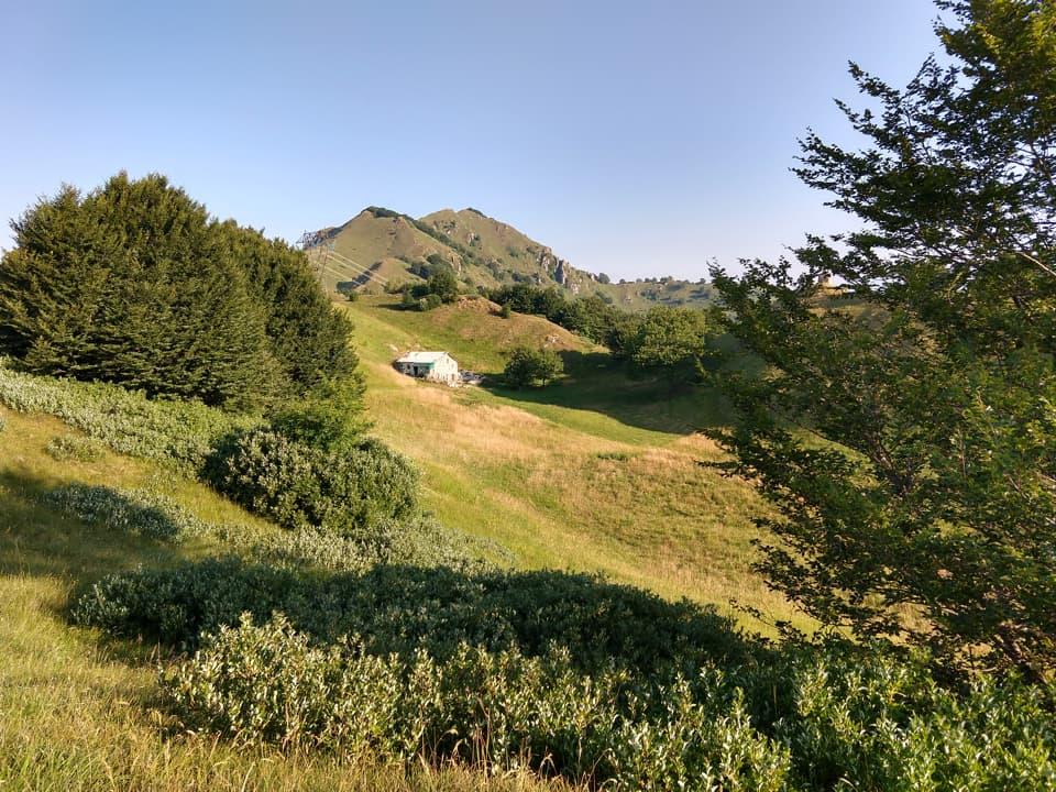 La vetta del Monte Palo è facilmente raggiungibile dal Rifugio Nasego in una ventina di minuti