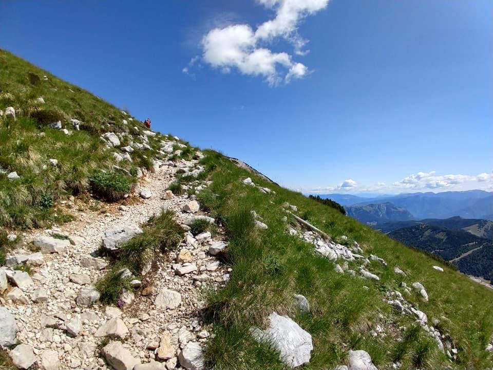 Il blu del cielo e il verde intenso dell'erba compongono il più classico dei panorami estivi di montagna