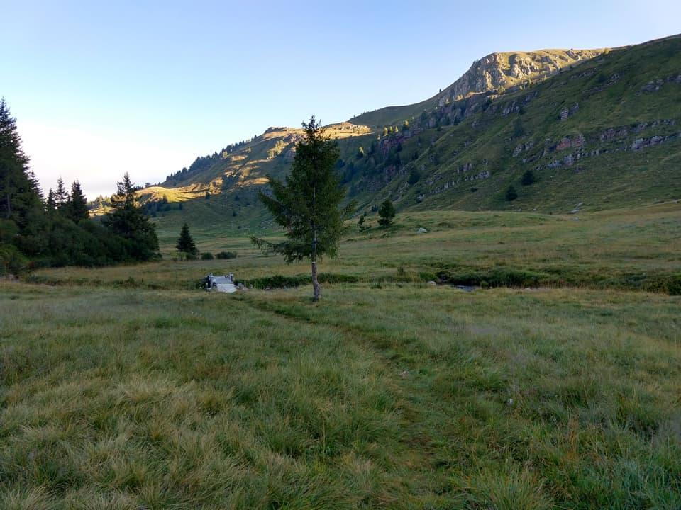 Il sentiero prosegue verso la Malga Mai attraversando il Torrente Grigna con un caratteristico ponticello