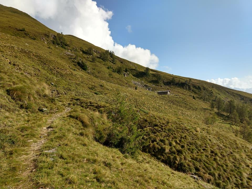 Dopo aver superato il primo tratto boschivo il sentiero si apre sulla Val di Scala