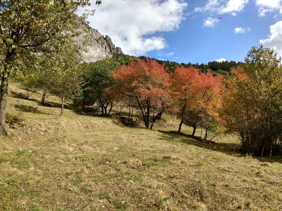 La discesa in bassa quota ci consente di ammirare la natura che d'autunno si trasforma.