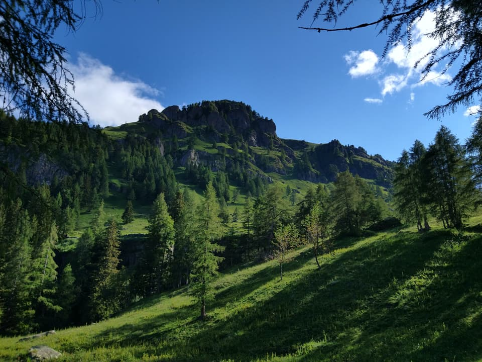 L'uscita dal bosco è sempre una sorpresa e quasi sempre offre scorci panoramici meravigliosi