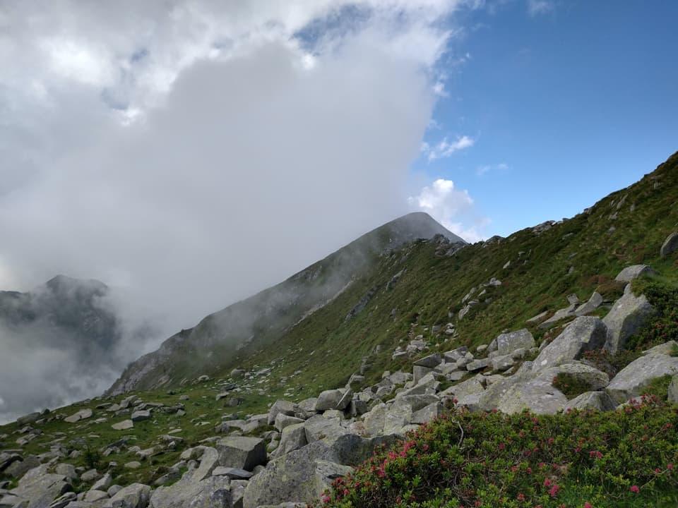 Godiamoci l'immagine di questa bella cresta erbosa, presto sparirà nella nebbia