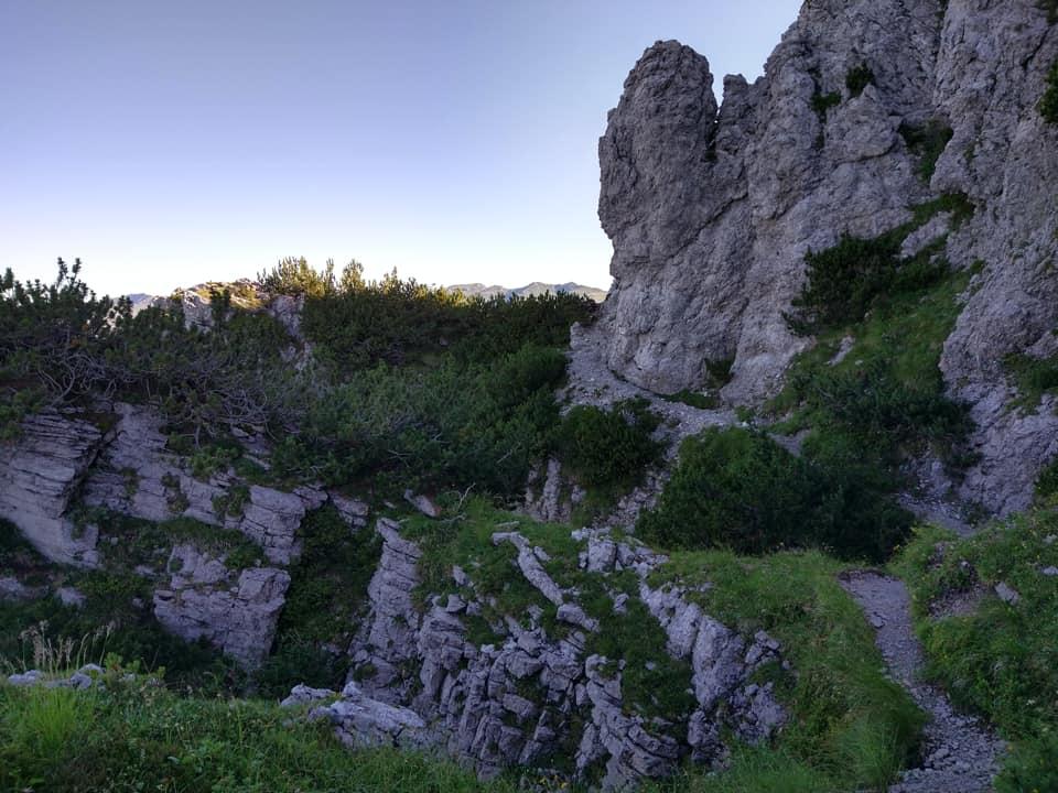 Salendo in quota ci si immerge in un mondo magico fatto di roccia e pino mugo
