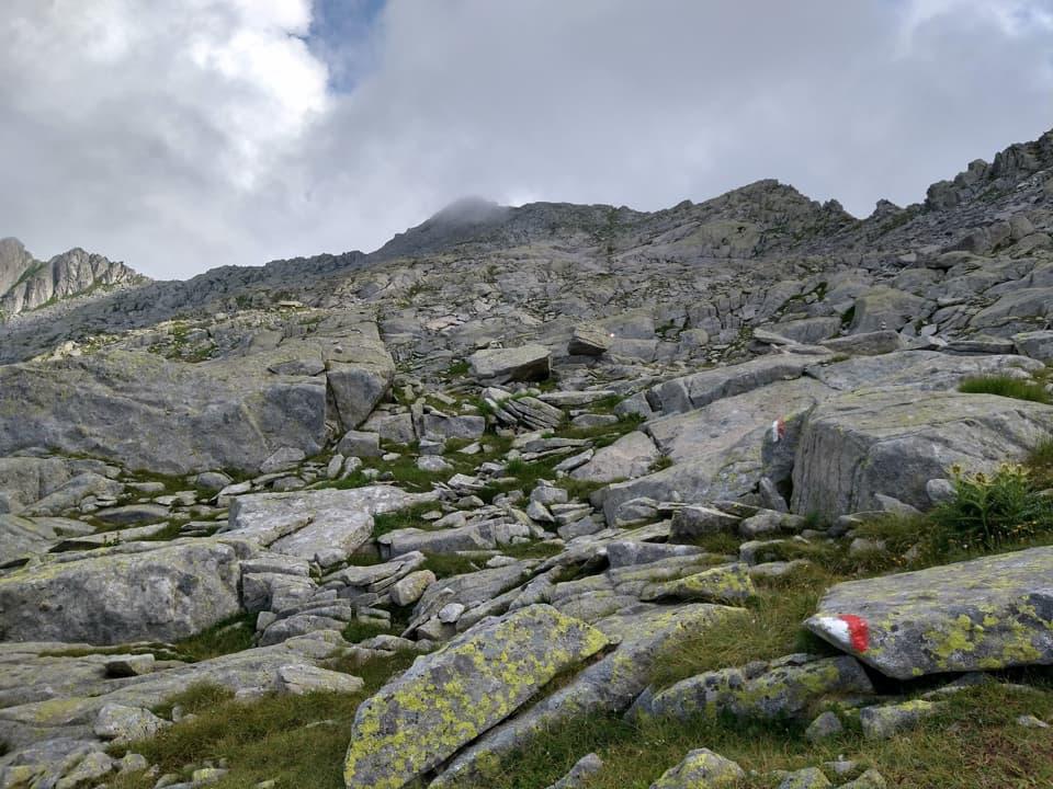 Finalmente la roccia, la nostra meta finale è ben visibile in alto.